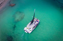 Private Catamaran Sailing Adventure desde Punta Cana