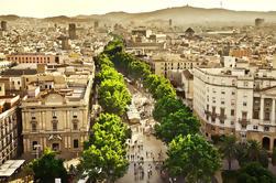 Tour Privado: Tour de Turismo de medio día en Barcelona