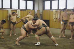 Visita a Sumo Morning Practice