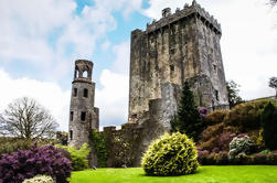 Blarney Castle, Cork City y Cobh Tour privado desde Killarney