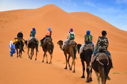 Randonnée privée à 4 jours de chameau et sentier de Kasbah depuis Marrakech