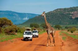 Parque Nacional Nairobi de Día Completo, Orfanato de Elefantes, Centro de Giraffe y Tour del Museo Karen Blixen desde Nairobi