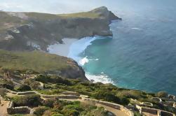Peninsula Tour - Medio día desde Ciudad del Cabo
