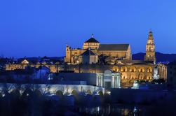 Experiencia de Córdoba durante la noche incluyendo tour por la ciudad