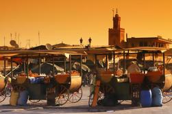 Tour privado: Excursión de medio día a Marrakech