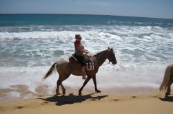 Los Cabos Shore Excursion: Cabalgata Aventura