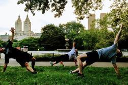 Central Park Core Tour: Una experiencia de la vista