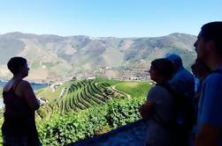 Pequeno Grupo Douro Wine Valley Tour com Almoço e Degustação de Vinhos