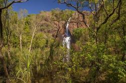 Excursión de un día al Parque Nacional Litchfield desde Darwin