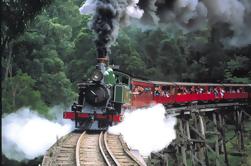 Puffing Tren de vapor Billy, Yarra Valley y Healesville Wildlife Sanctuary Day Tour