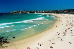 Excursão Sydney, Praia de Bondi e Kings Cross