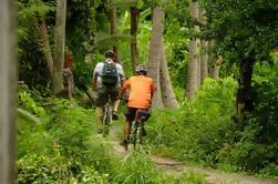 Passeio de Bicicletas e Jardins de Banguecoque