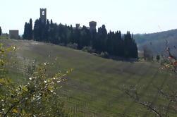 Florencia viaje de un día a Chianti y San Gimignano