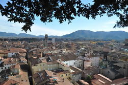 Excursión privada de la costa de Livorno de Pisa y Lucca