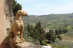 Excursión privada a la costa de Livorno de Chianti y San Gimignano