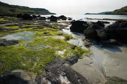 Magique Mull, Iona et les îles de l'Ouest des Highlands