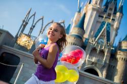 1 día de Disney World con transporte desde Miami