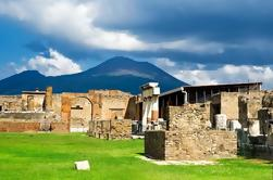 Private Round-Trip Transport to Pompeii, Mt Vesuvius, and Winery from Naples or Amalfi Coast