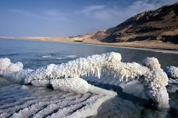 Excursão de meio dia pelo mar morto de Amã