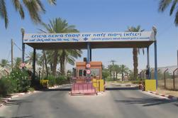 Traslado con aire acondicionado Allenby / King Hussein Bridge al aeropuerto de Amman