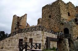 Excursão privada de dia inteiro a Umm Qais e Ajloun de Amman