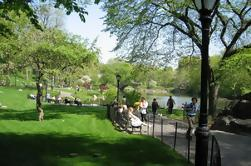 Central Park y Upper East Side Tour a pie