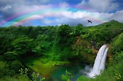 Kona Shore Excursion: cachoeiras da floresta e Rancho Parker