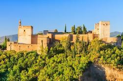 Viator Exclusive: Acceso prioritario a la Alhambra y los jardines del Generalife en Granada