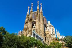 Sagrada Familia Pomeriggio Tour con opzionale opzionale Towers Accesso