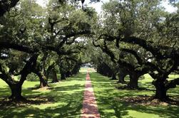 Pequeño Grupo Tour de Oak Alley y Laura Plantation de Nueva Orleans