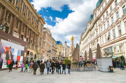 Excursão de um dia a partir de Cesky Krumlov para Viena - Apenas transporte