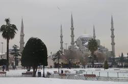 Mejores sitios de Estambul: Tour en grupo pequeño de medio día