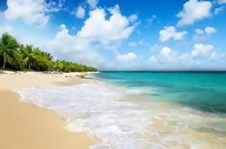 Excursão de um dia em Punta Cana: Catalina Island and Altos de Chavon