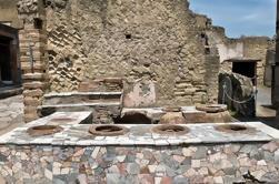 Excursión privada a pie Herculaneum
