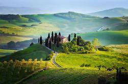 Passeio de vinhos de Chianti, meio dia, com Private Luxury Van