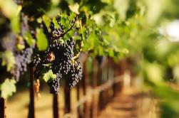 Los Angeles Tour: Malibu Wine Country
