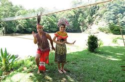 Experiencia de Temburong Tour de día completo desde Bandar Seri Begawan