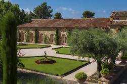 Excursión privada provenzal de degustación de vinos desde Niza