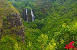 Excursión de un día a Kauai: Cañón de Waimea, río Wailua desde Oahu