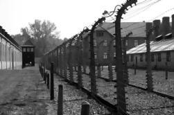 Excursión de Auschwitz y Birkenau desde Cracovia con recogida