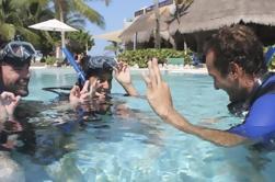 Curso PADI Open Water Diver en la Riviera Maya