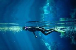 Excursión de buceo Cozumel desde Playa del Carmen