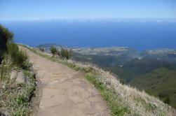 Picos de Madeira - Levada Walk