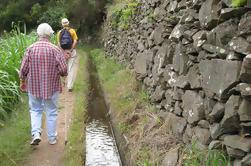 Maroços Mimosa Valley - Levada Walk
