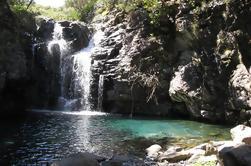 Lagos de Madeira: Levada Walk