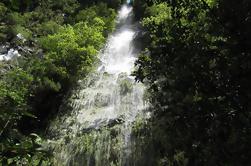 Hidden Corners: Levada Caminata desde Funchal
