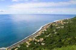 Excursión de la Costa Sur de Madeira desde Funchal