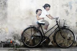 Experiencia Cultural de medio día en Penang
