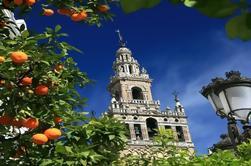 Visite guidée du quartier Santa Cruz et de la cathédrale à Séville
