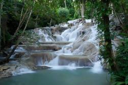 Ocho Rios Shore Excursion: Excursión privada de Dunn's River Falls